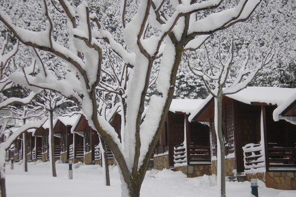 Camping Valle de Tena bungalows invierno