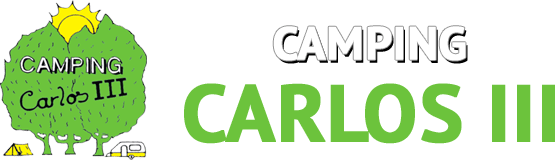 Resultado de imagen para camping carlos III